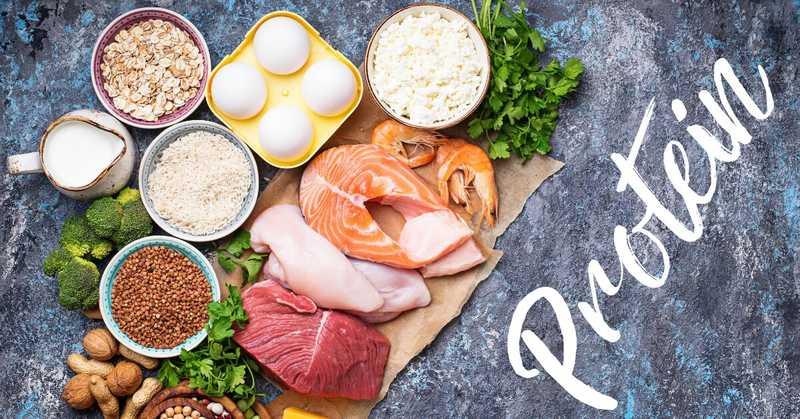 تاثیر پروتئین در تقویت بدن در مقابل کرونا