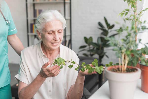 سلامت روحی روانی سالمند