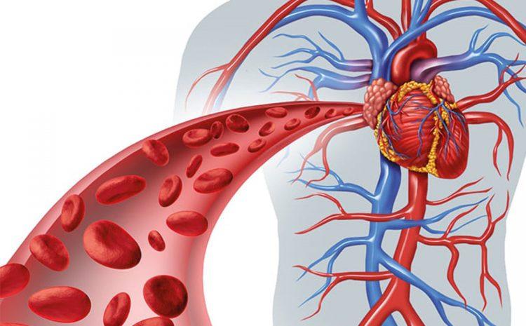 علل بیماری دریچه قلبی