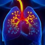 علائم آسم کودکان و بزرگسالان + درمان آسم و پیشگیری از ابتلا