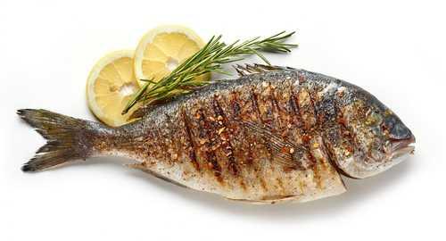 تامین پتاسیم با مصرف ماهی